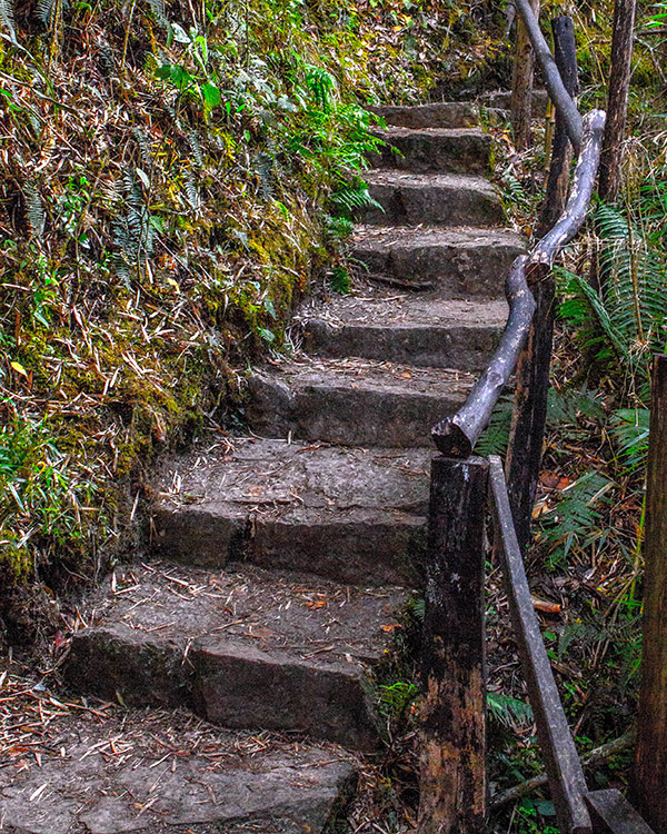 Uneven stone stairs up the side of a mountain on the way to the lost city of gold in Guatavita Colombia with kids