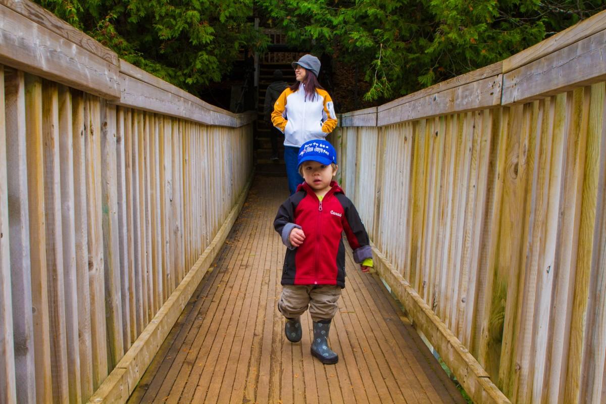 2015 - Belfountain Conservation Area