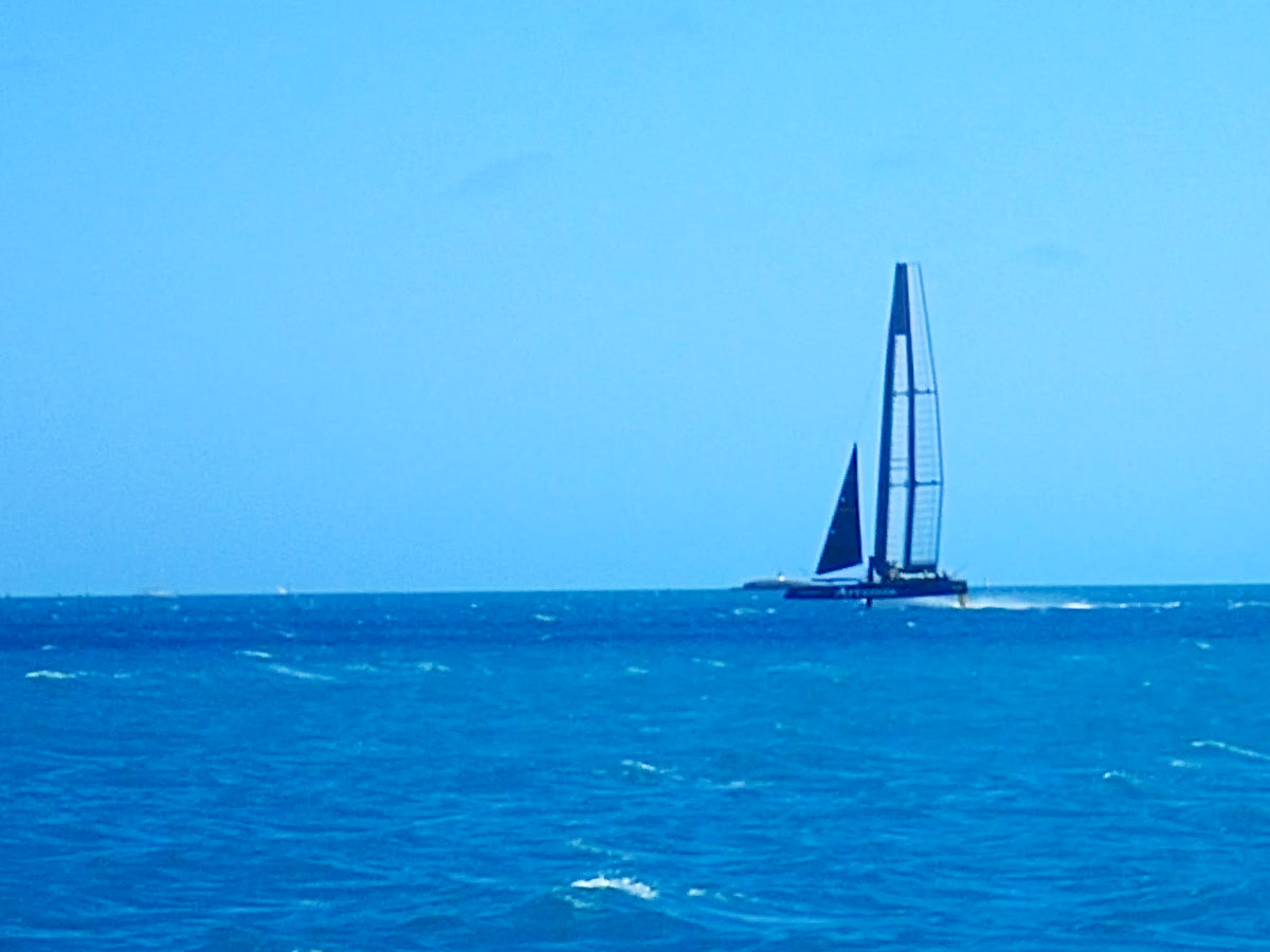 The Artemis, an America's Cup racing sailboat skims across the waters in Bermuda - Boating in Bermuda