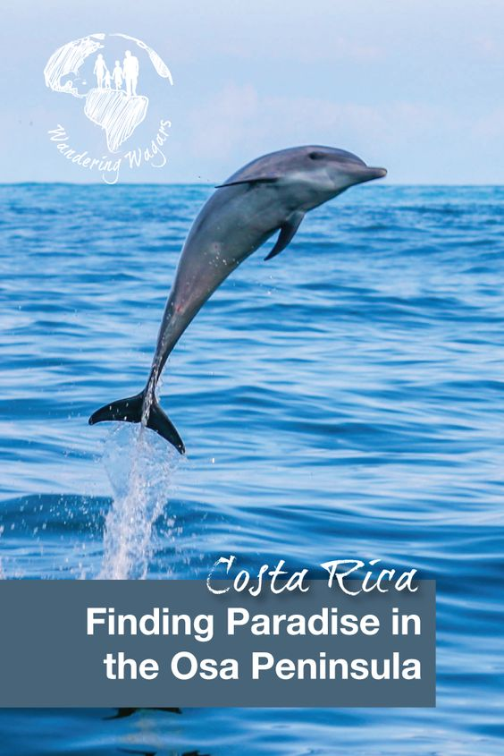 Costa Rica Finding Paradise on the Osa Peninsula - Pinterest