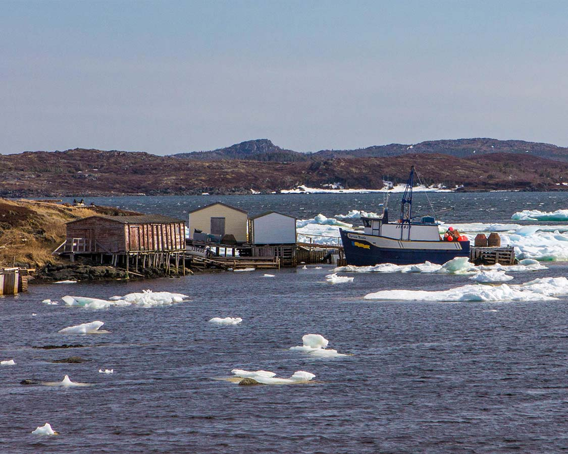 Ice filled bay with fishing boats in Newfoundland