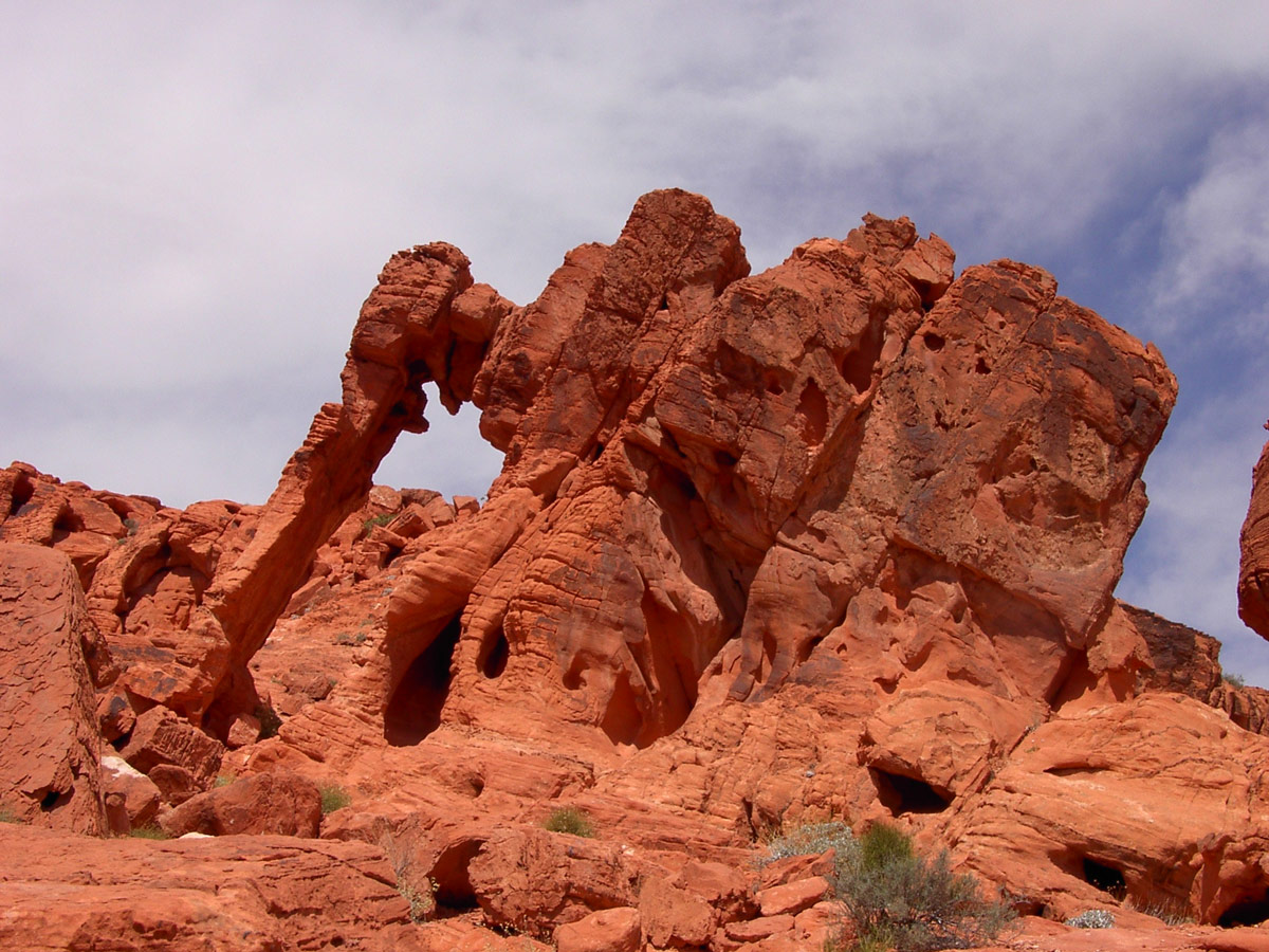 A natural rock formation resembling an elephant in Valley of Fire State Park, Nevada