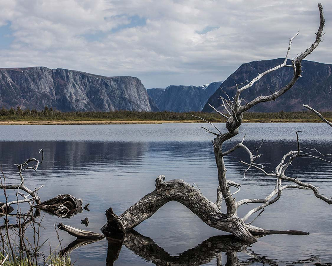 How to experience Western Brook Pond in Newfoundland with kids