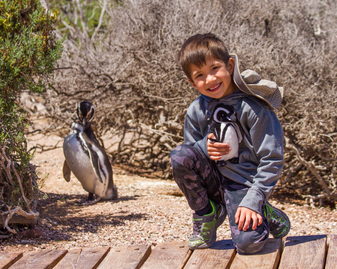 A young boy poses for a photo with a wild penguin in Punta Tombo in Patagonia, Argentina