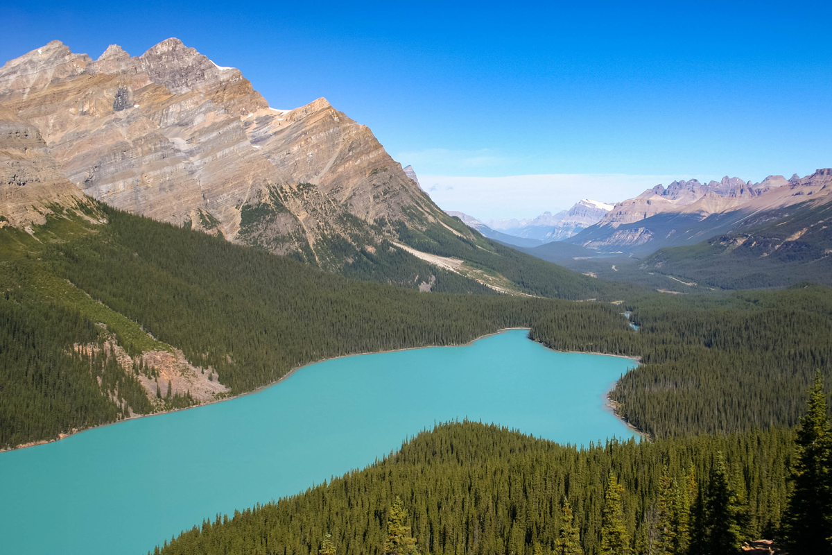 A snow capped mountain range looming over a green forest and an emerald blue lake as viewed from Bow Summit on the Icefields Parkway. An Unforgettable Canadian Road Trip