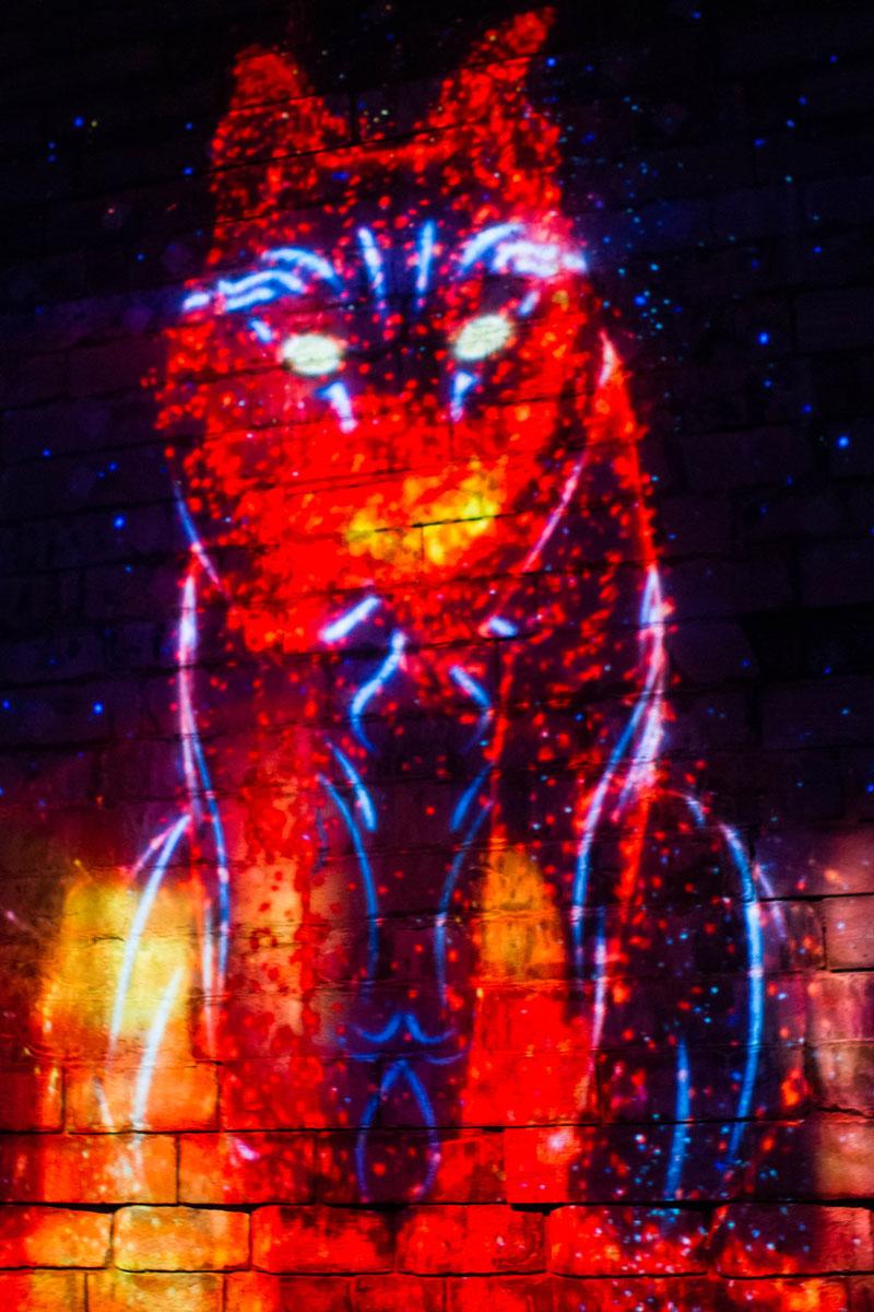 Illuminated image of a bobcat at Lumina Borealis Kingston