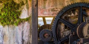 large cog wheels linked together against a mossy adobe wall at the River Antoine Rum Distillery in Grenada