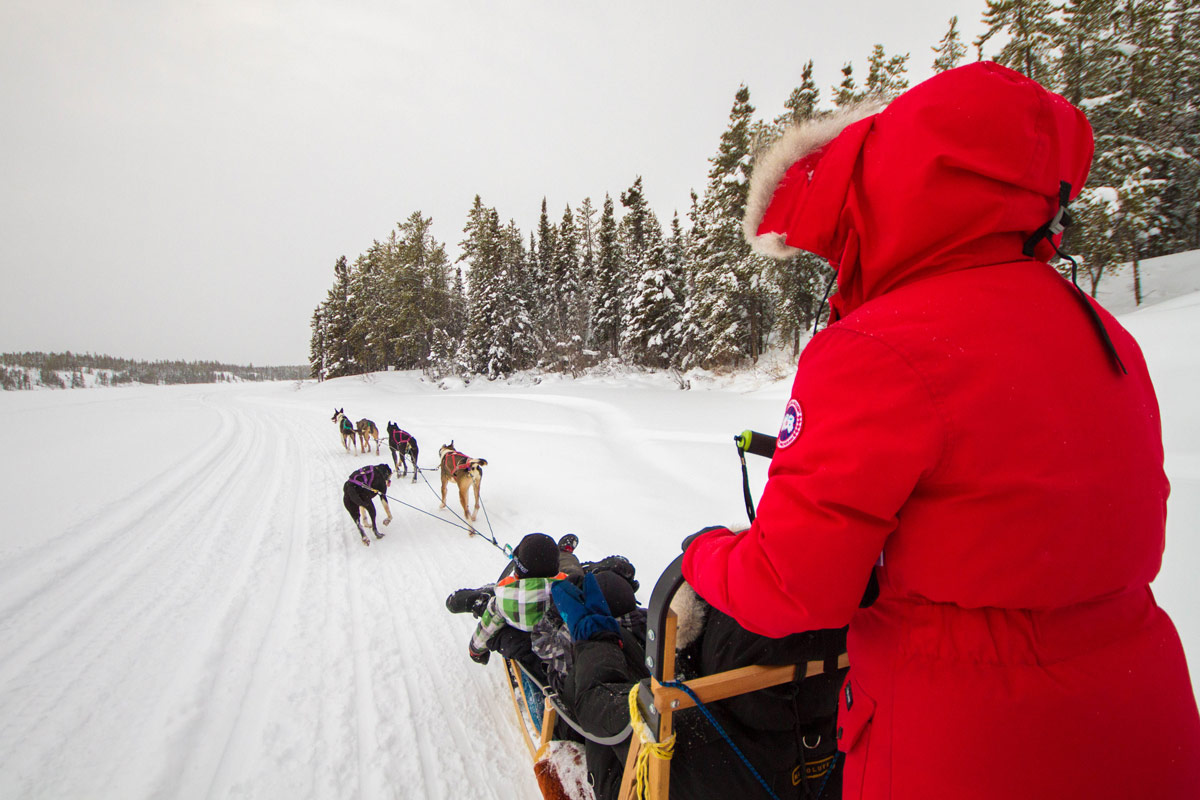 Family dog sledding on frozen lake is one of our top winter activities to do in Yellowknife with kids.