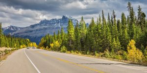Canadian highway through a forest with Rocky mountains in the background