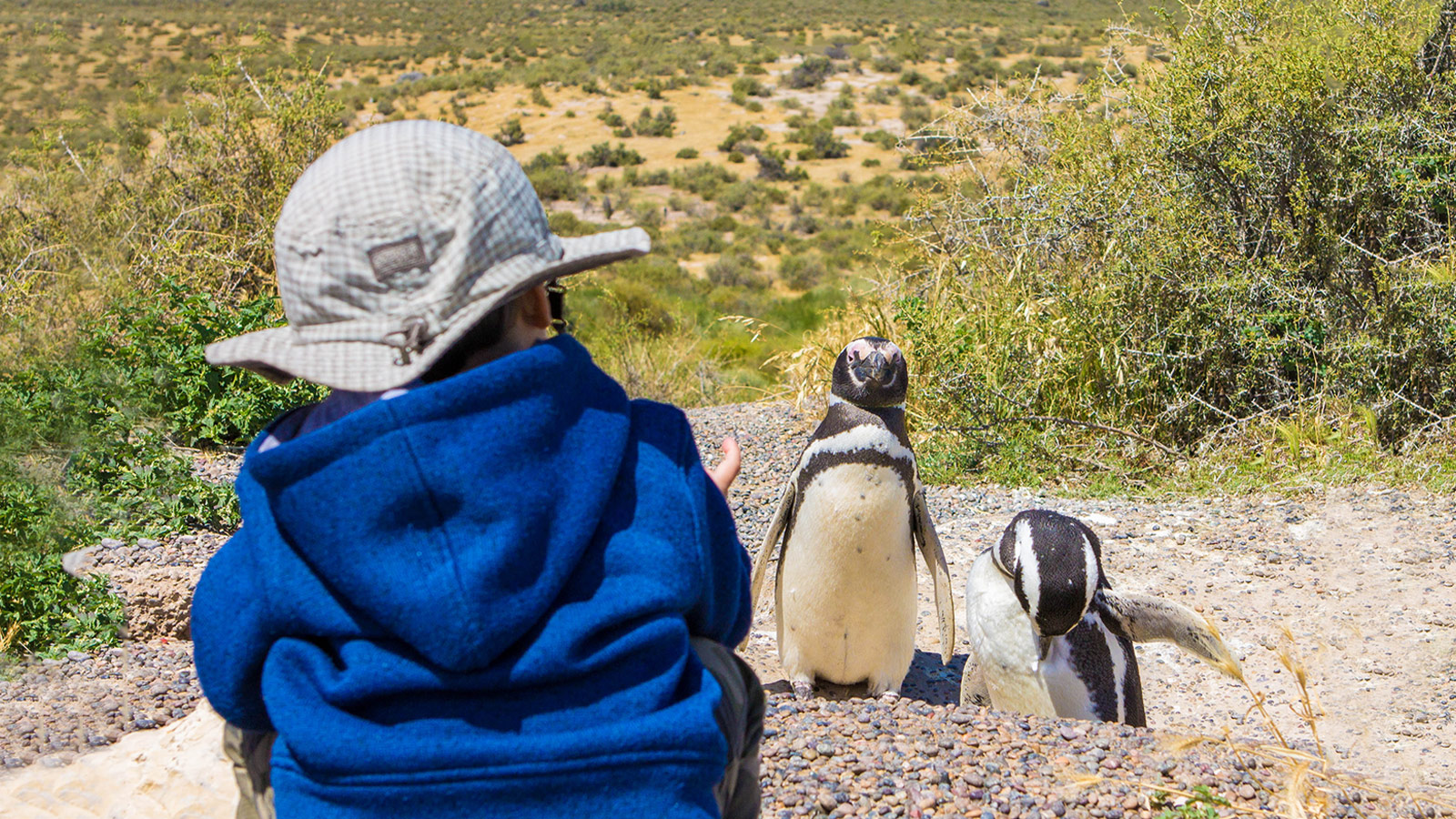 Young boy visiting penguins in Punta Tombo Argentina