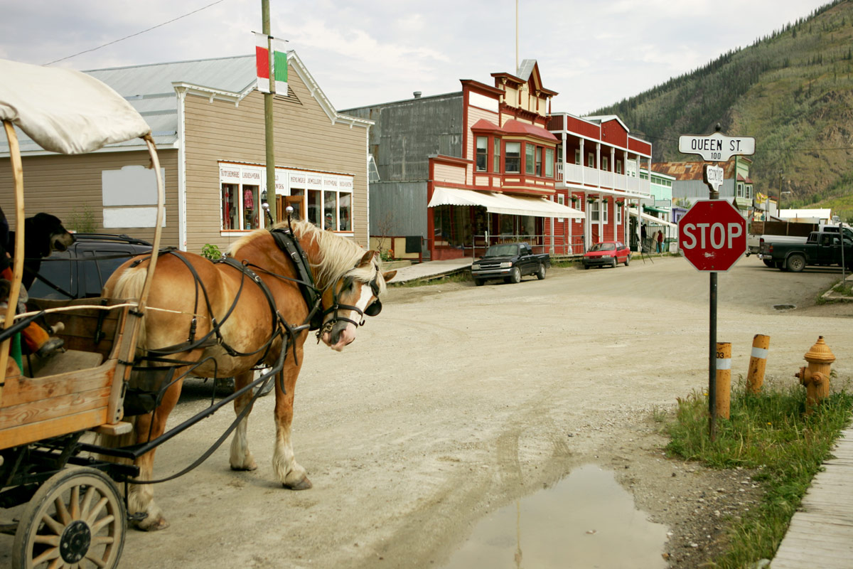 A horse and buggy walk through the heritage center of Dawson City Yukon one of the most amazing places in Canada