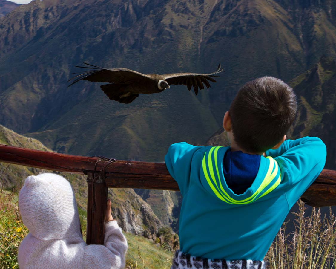 Two boys watching condors in Colca Canyon Peru