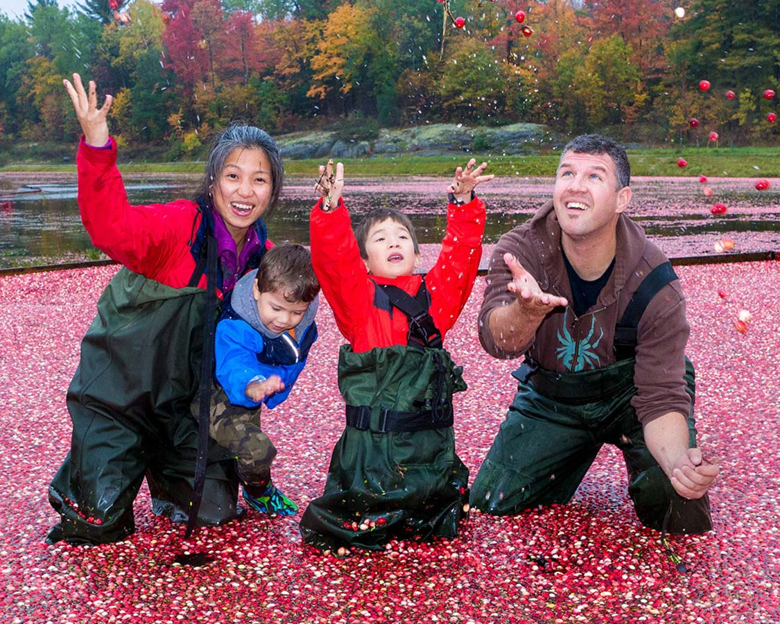 Celebrating at Johsons Cranberry Marsh during the Bala Cranberry Festival