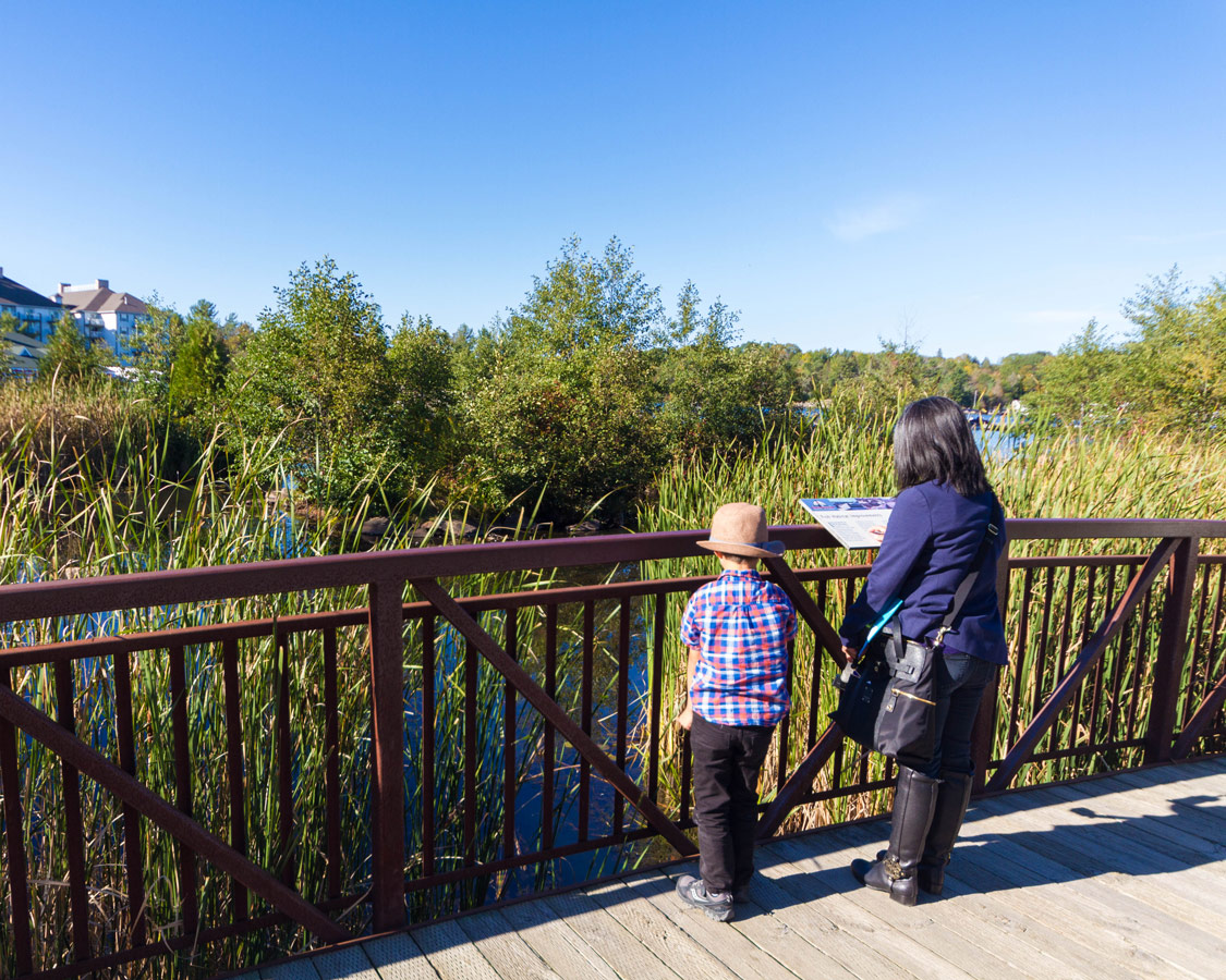 Christina and C explore the Gravenhurst boardwalk