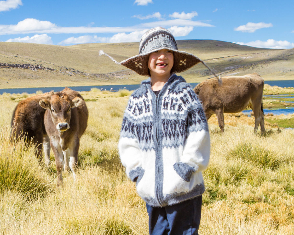Wandering through a cow pasture to look for Chilean Flamingoes in the Peruvian Andes on a Peru with kids road trip 14 day Peru itinerary