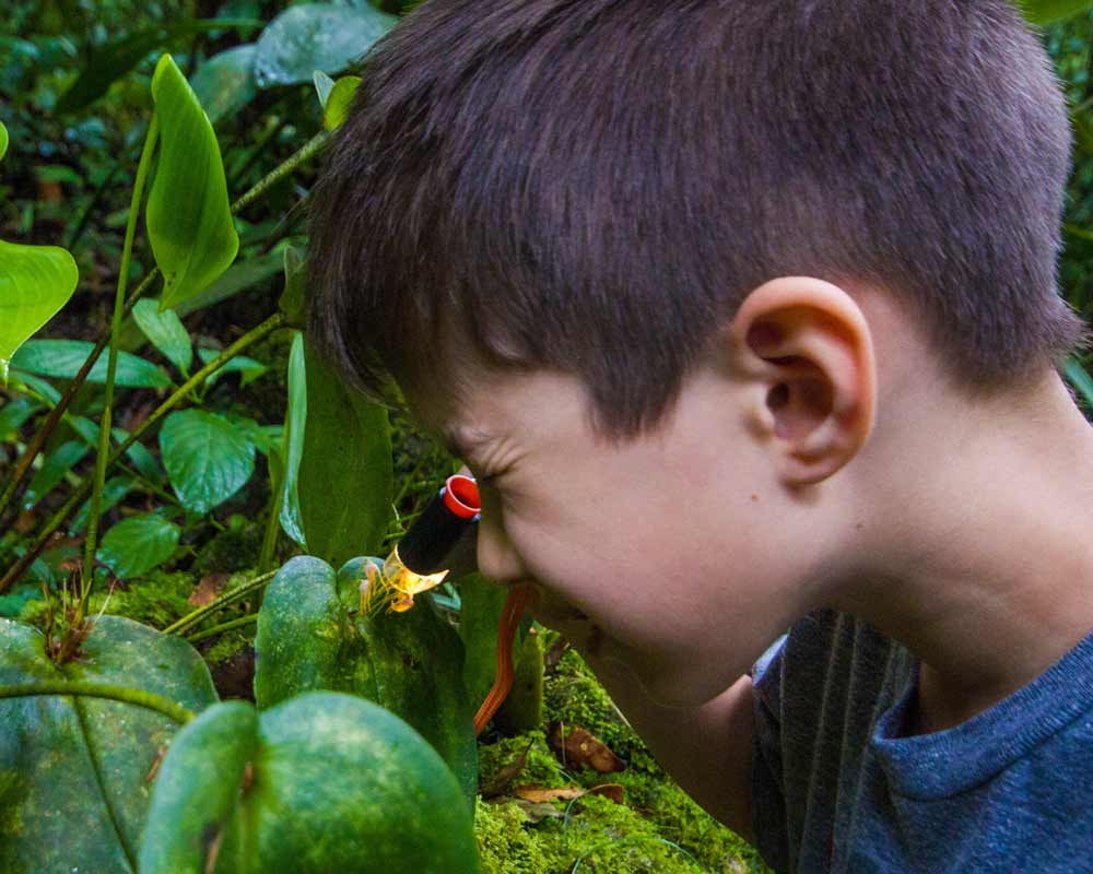 A young boy examines a tiny orchid with a microscope at InkaTerra Machu Picchu Pueblo hotel in Peru