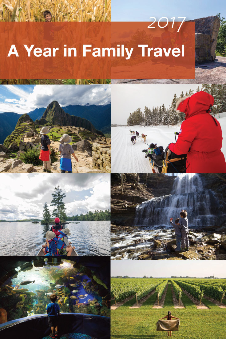 2017 a year in family travel pinterest image