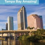 Tampa Bay is one of the most family-friendly cities in Florida. And with amazing wildlife, beautiful beaches, fun theme parks and so much more, finding things to do in Tampa with kids is easy! From Busch Gardens to Manatee viewing, check out some of our favorite things to do in Tampa Bay!