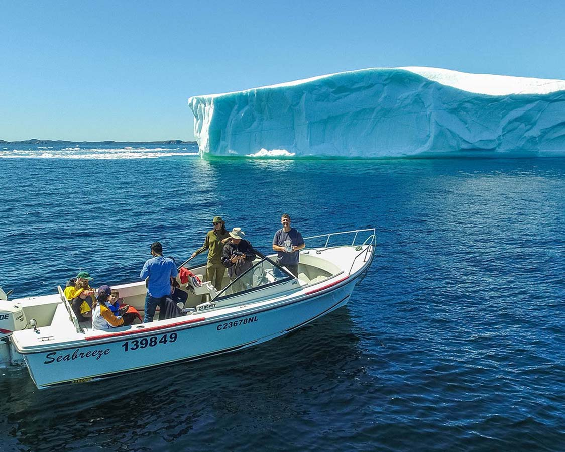 From Icebergs To Wineries: All The Things To Do In