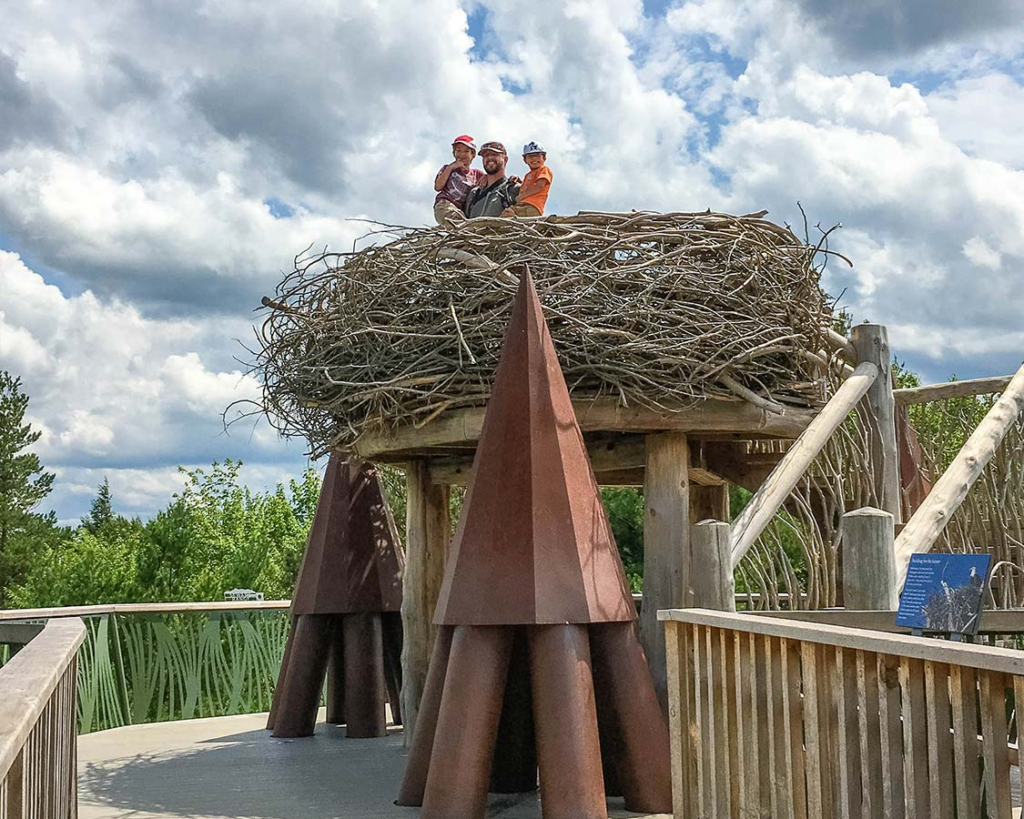 Things To Do in Upstate New York - Wild Walk at The Wild Center