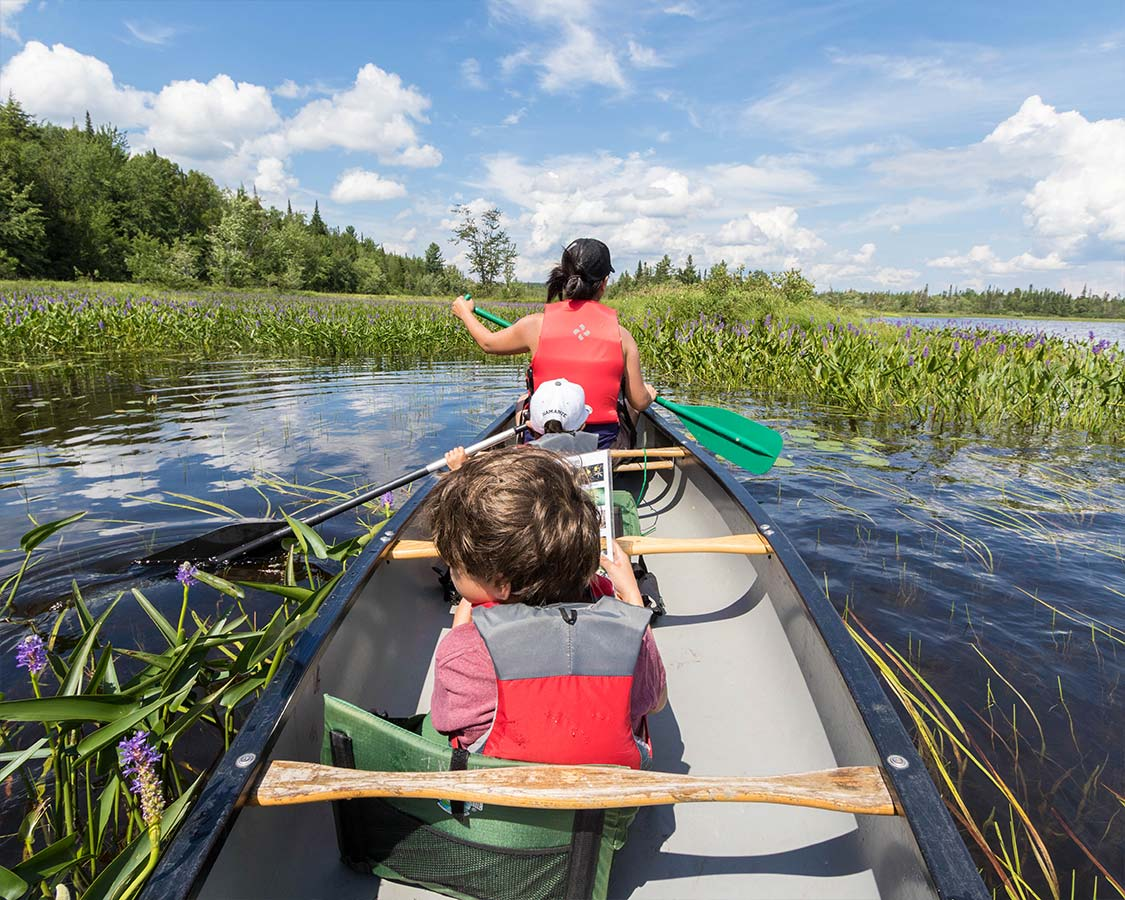 Wild Center New York Raquette River Canoeing