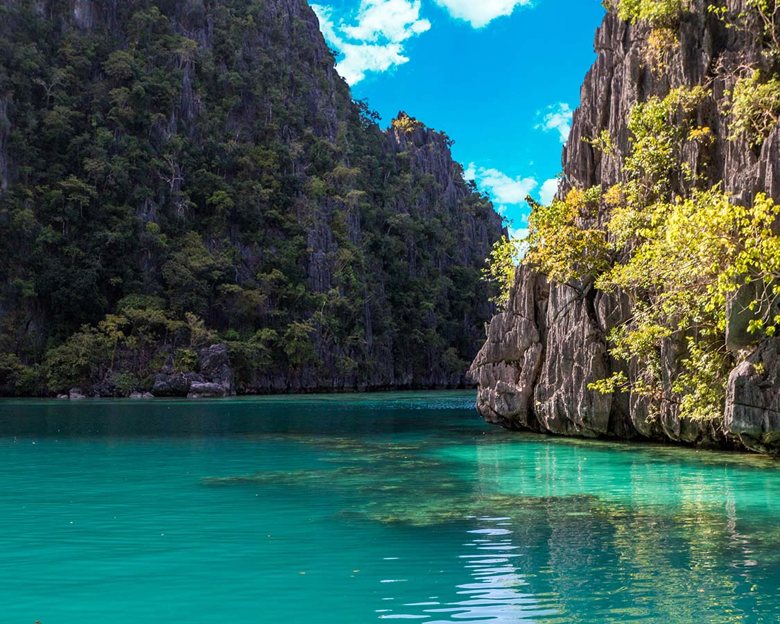 Coron Island Philippines Barracuda Lake