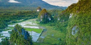 Are you looking for the best things to do in Puerto Princesa Philippines? Discover the Underground River, Nabtong Beach, Baker's Hill and so much more!