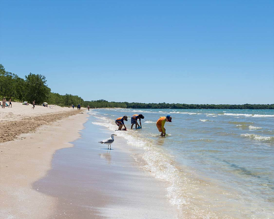 Sandbanks Provincial Park For Families