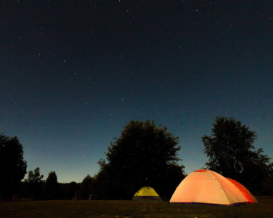 Stargazing with kids who camp
