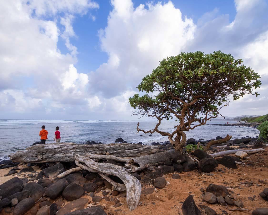 Kauai family vacation boy on rocks near the ocean