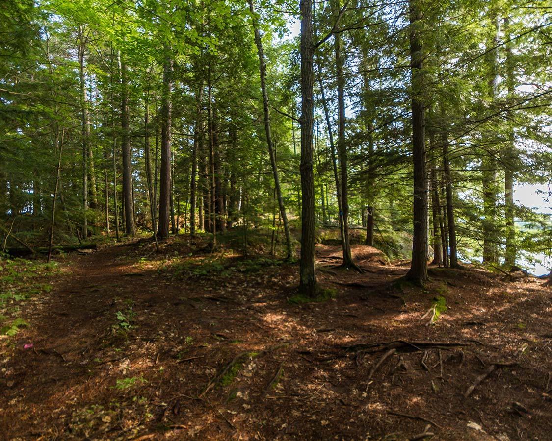 Hiking at Silent Lake Ontario
