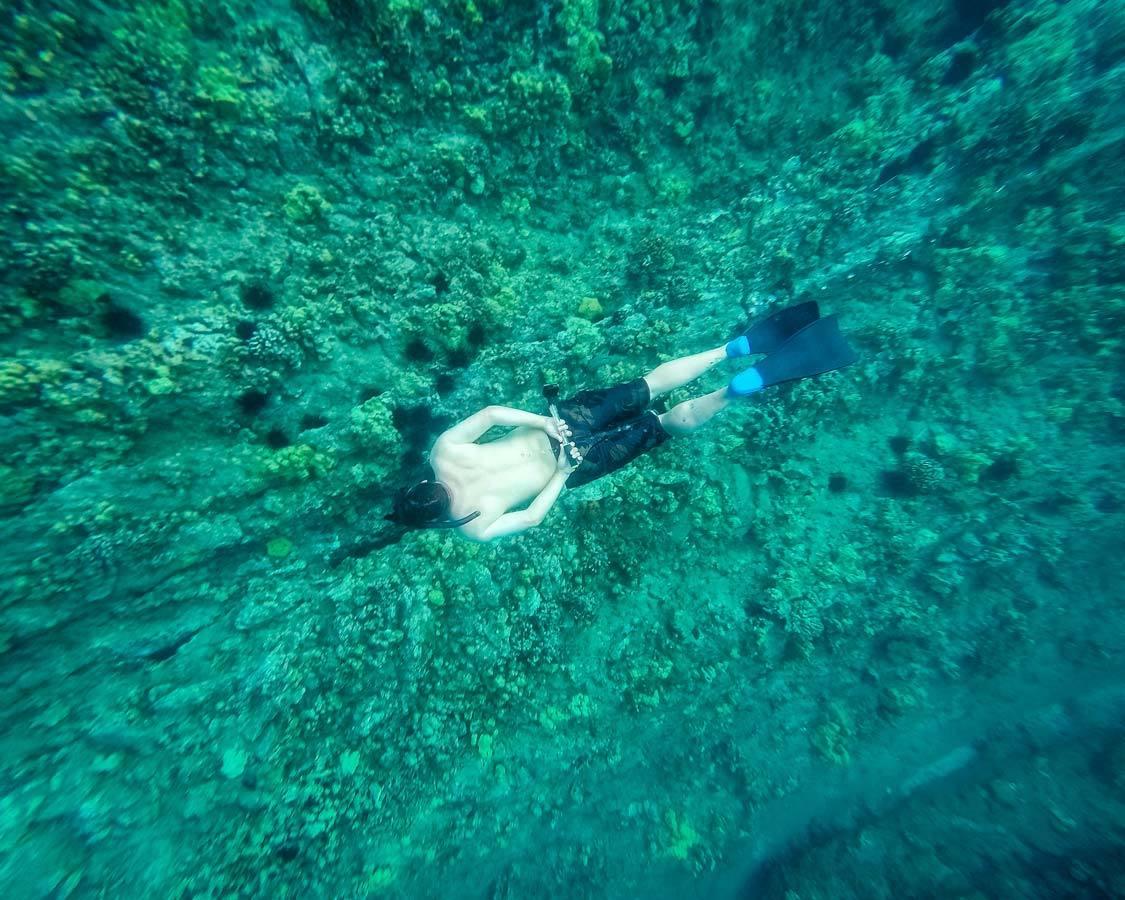 Freedive snorkel in Molokini Crater Maui