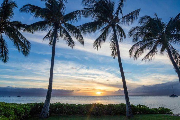 One week Maui itinerary 5 days