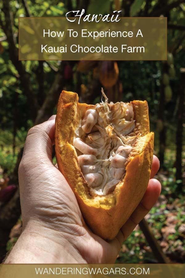 The Best Kauai Chocolate Tour