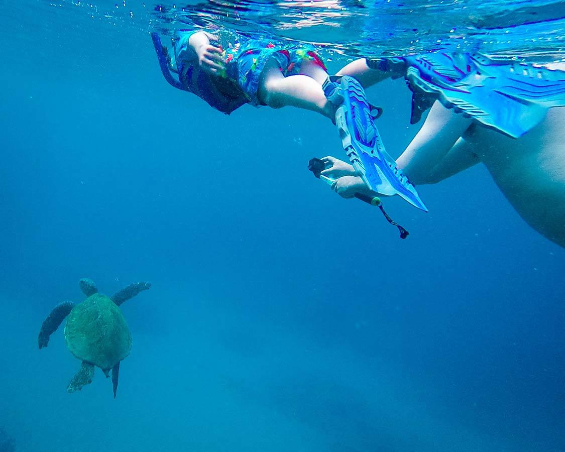 Snorkeling in Maui for children