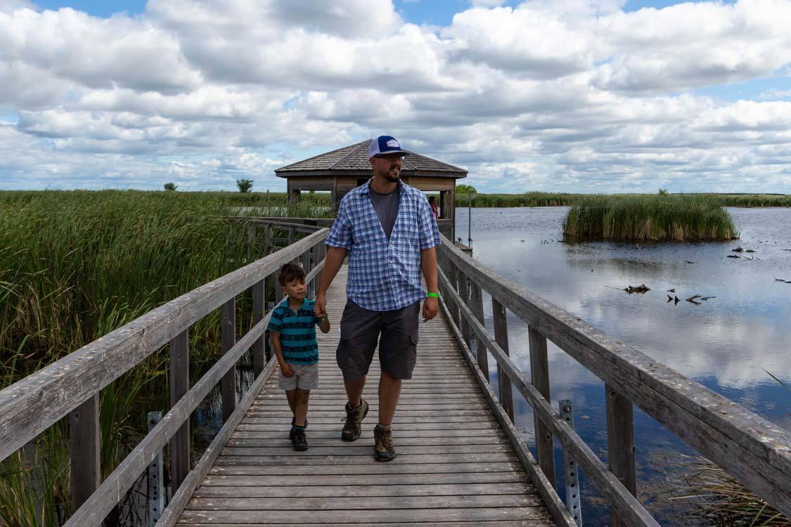 Oak Hammock Marsh Winnipeg Things To Do In
