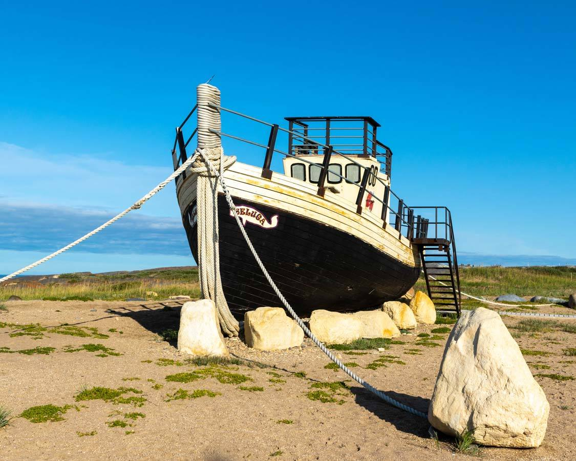 Churchill Manitoba Guide Beluga Boat