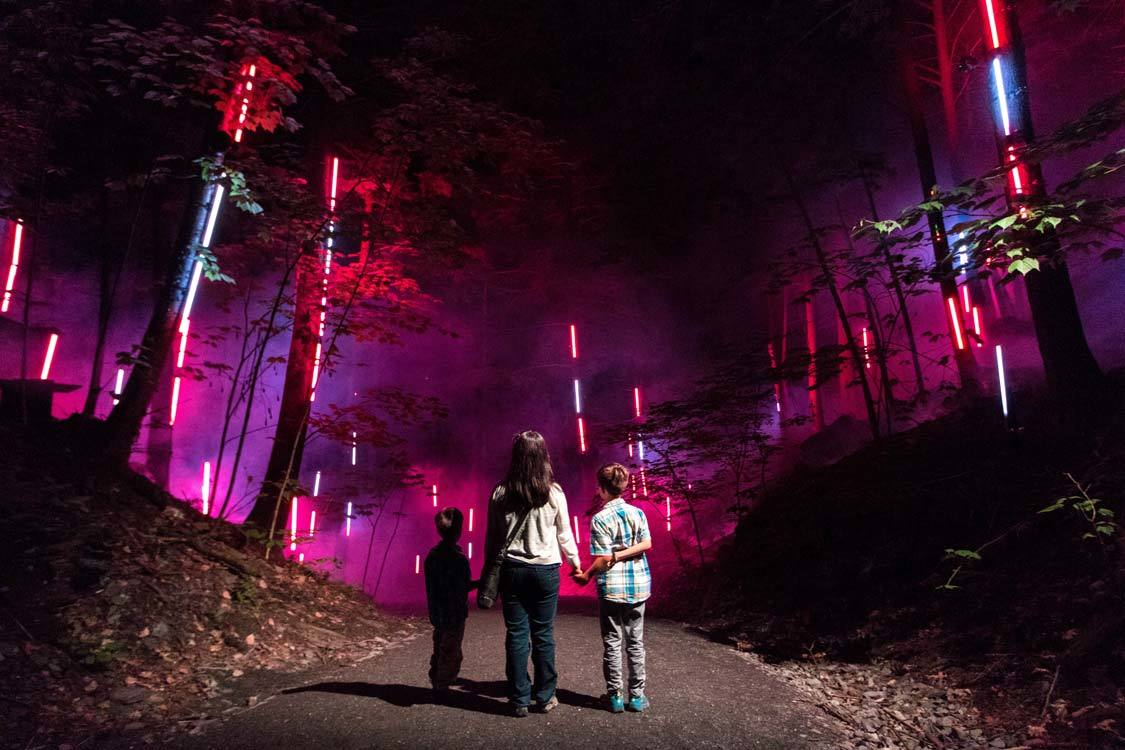 Foresta Lumina things to do near Sherbrooke Quebec