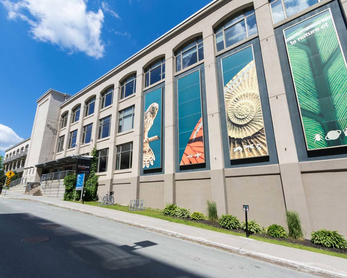 things to do in Sherbrooke Quebec Museum of Nature and Science