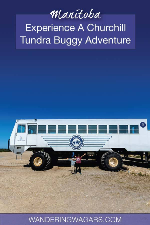 Churchill Tundra Buggy Adventure