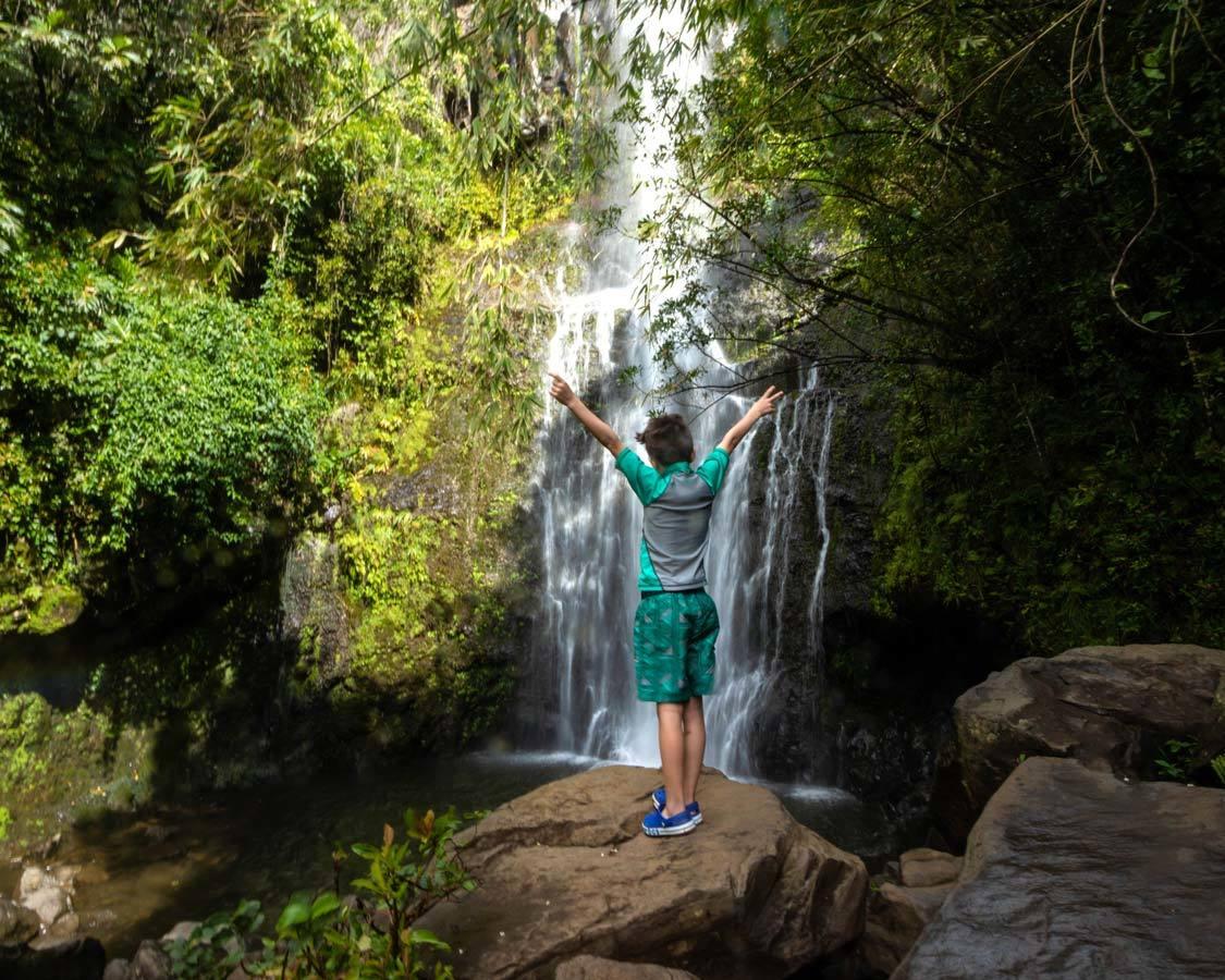 Wandering Wagars on the Hana Highway in Maui