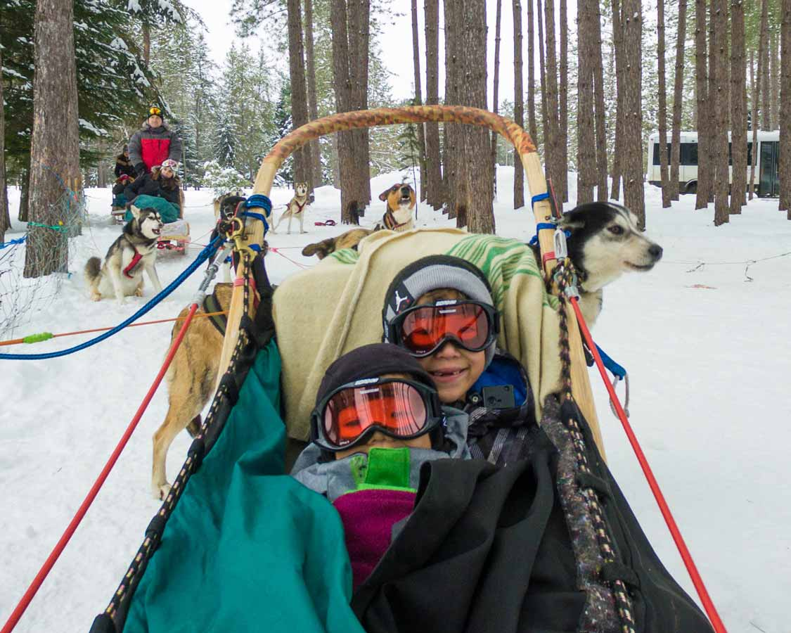 kids dog sledding on a family ski trip