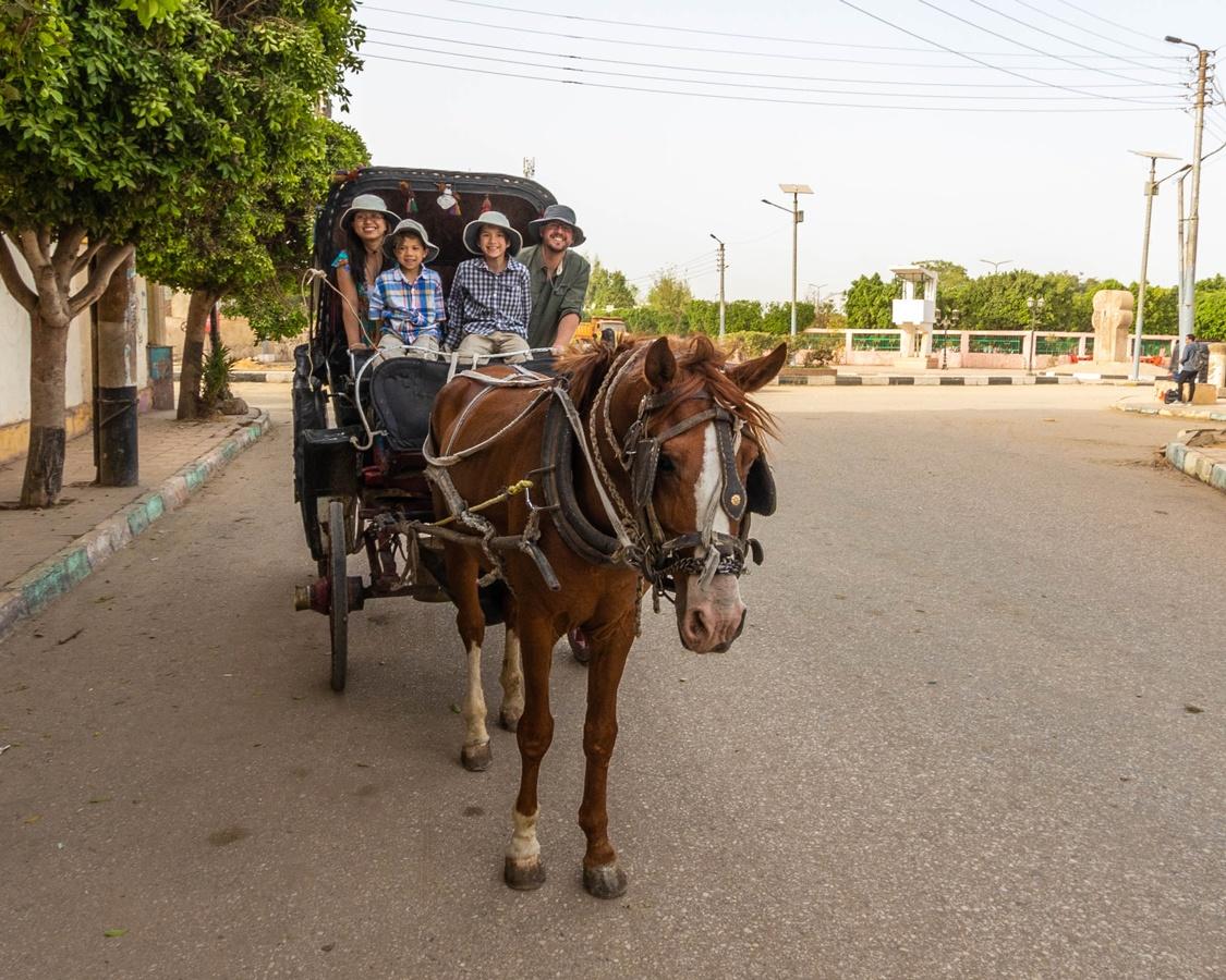 Wandering Wagars in Kom Ombo Temple Egypt