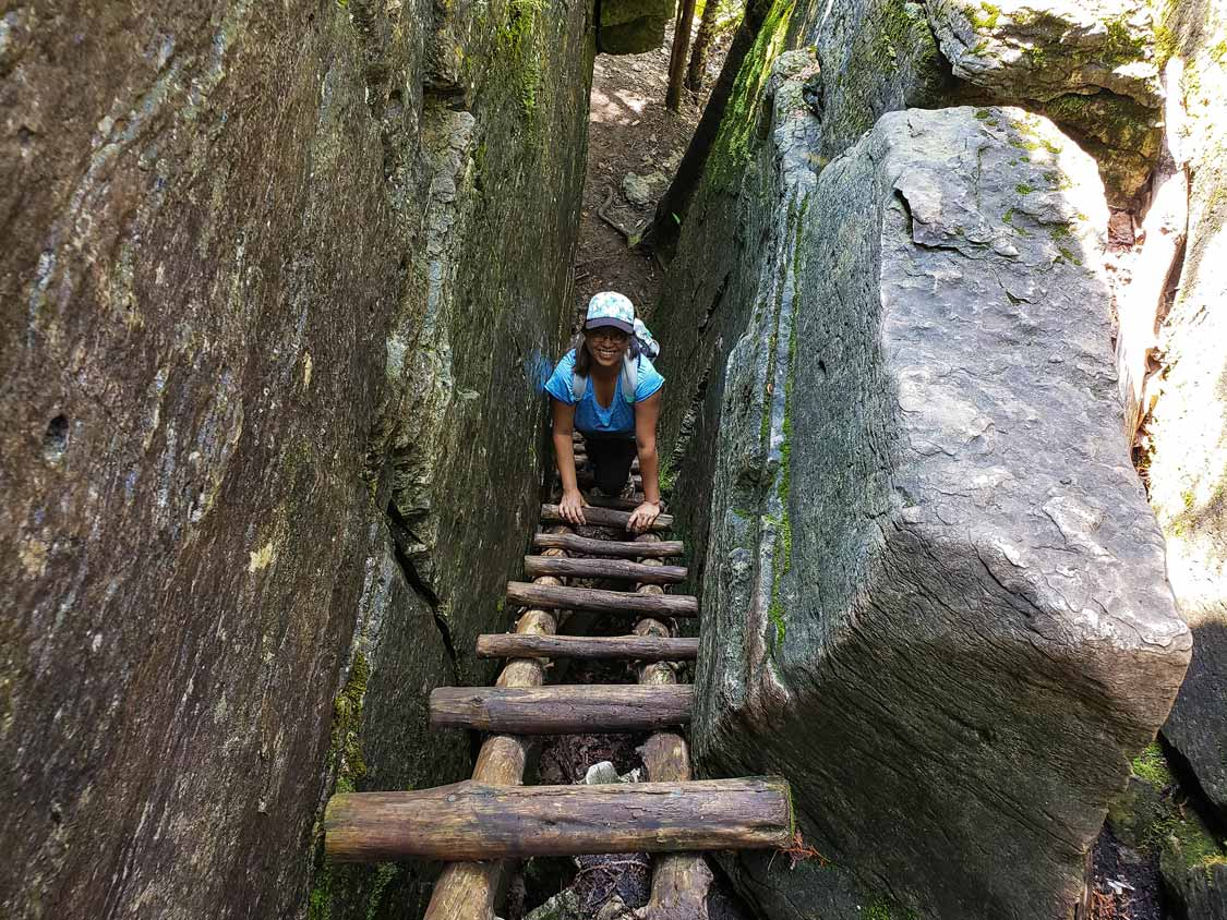 Climbing the ladders on the Cup and Saucer Adventure Trail