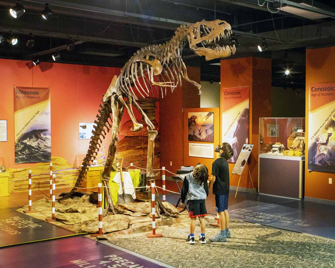 Albert the Albertasaurus at the Thunder Bay Museum