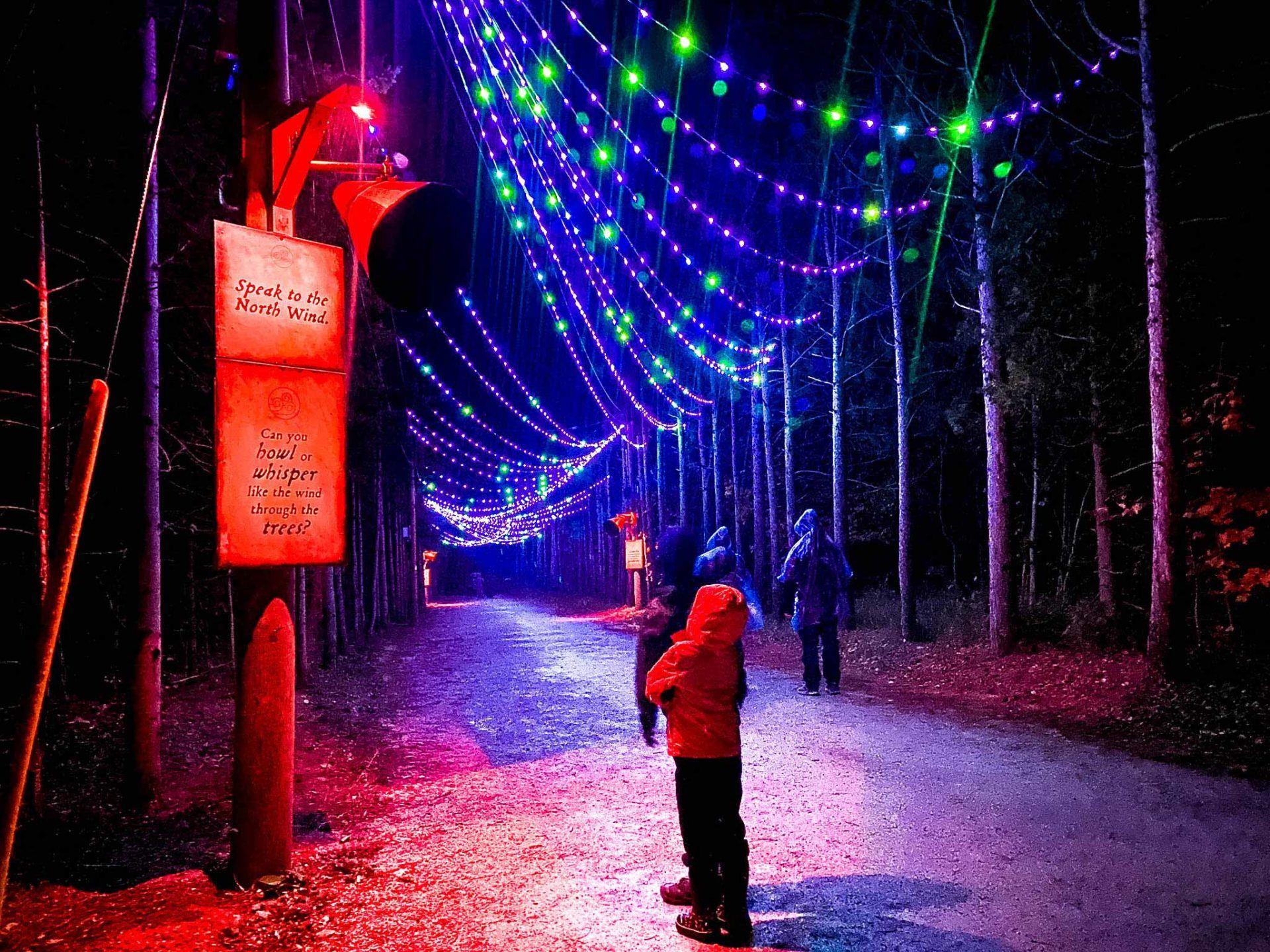 Agora Light Trail at Blue Mountain