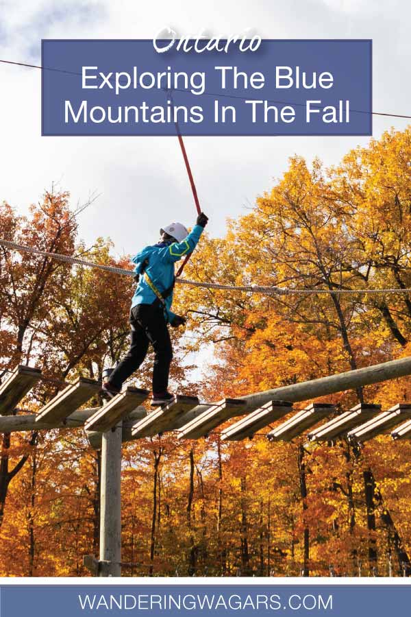 Blue Mountains In Fall