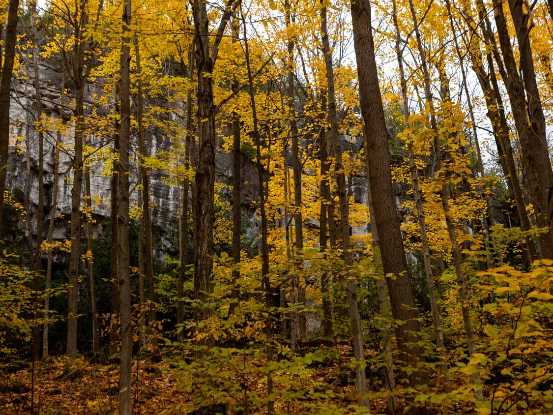 Metcalfe Rock during fall in the Blue Mountains Ontario